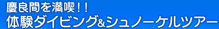 慶良間を満喫!!体験ダイビング&シュノーケルツアー
