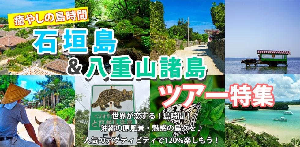 石垣島&八重山マリンスポーツアクティビティ特集|みーぐる