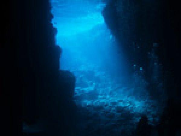 【ポイントまでボートで約10分!無料で餌付けもできる!】青の洞窟シュノーケルツアー